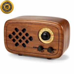 (Best Vintage Speakers) Rerii RW-01