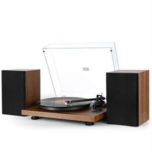 (Best Turntable Under $300) 1byone Wireless Turntable